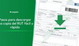 ¿Cómo descargar una copia del RUT en línea?