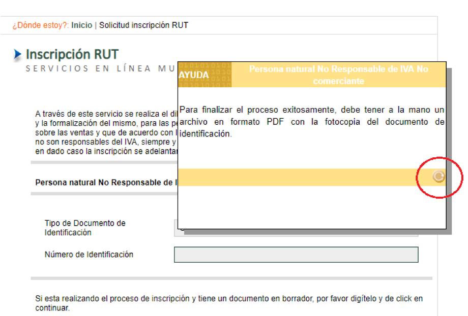 Inscripcion al RUT