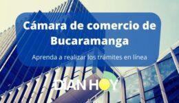 Cámara de comercio de Bucaramanga: Trámites en línea