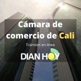 Cámara de comercio de Cali: Trámites en línea