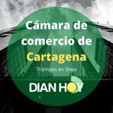 Cámara de comercio en Cartagena: Registro y trámites