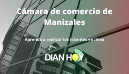 Cámara de comercio en Manizales: Trámites en línea
