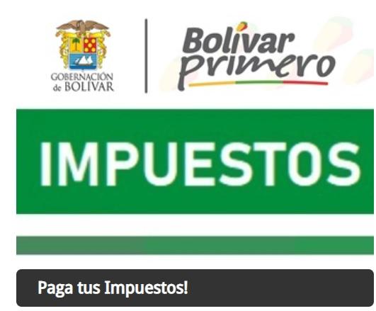 recibo de pago impuesto vehicular en bolivar