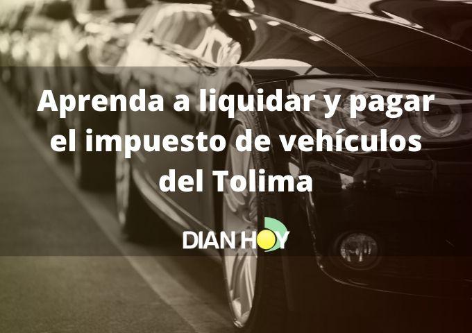 impuesto de vehículos del Tolima