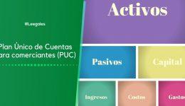 Plan Único de Cuentas para comerciantes (PUC)