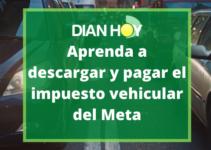 Cómo liquidar el impuesto vehícular en Meta