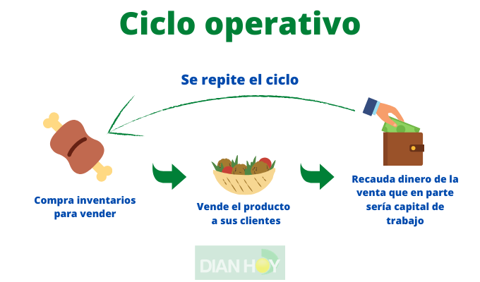 ciclo operativo