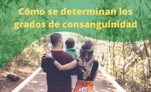 Grados de consanguinidad, parentesco y afinidad