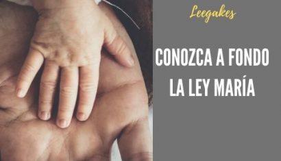 Ley María o licencia de paternidad