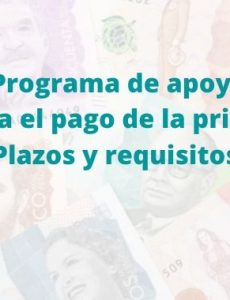 Programa de Apoyo para el Pago de la Prima de Servicios PAP