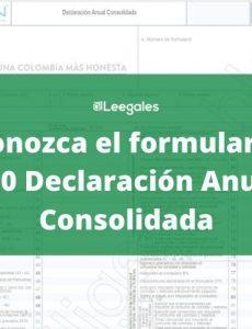 Ya se encuentra disponible el formulario 260 Declaración Anual Consolidada para el RST