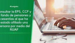 RUAF: Consultar EPS, pensión y cesantías de una persona