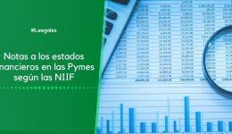 Notas a los estados financieros según las NIIF para Pymes