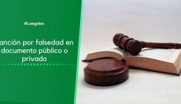 Falsedad en documento público o privado