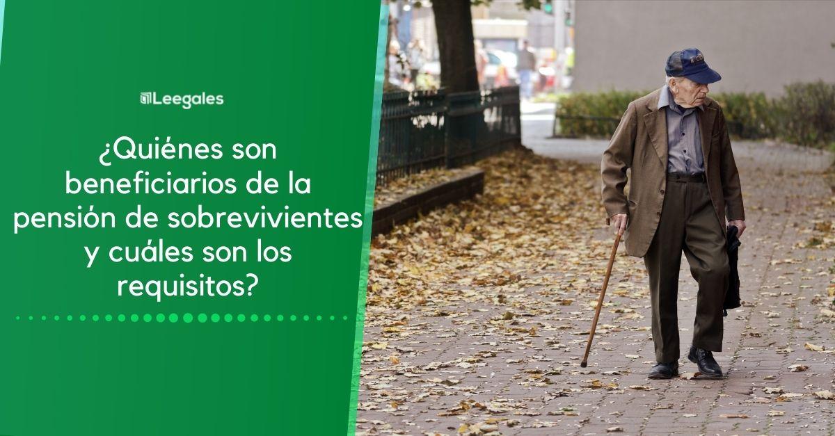Pensión de invalidez por riesgo común y laboral 1