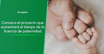 Ampliación de la licencia de paternidad ¿Cómo funcionará?