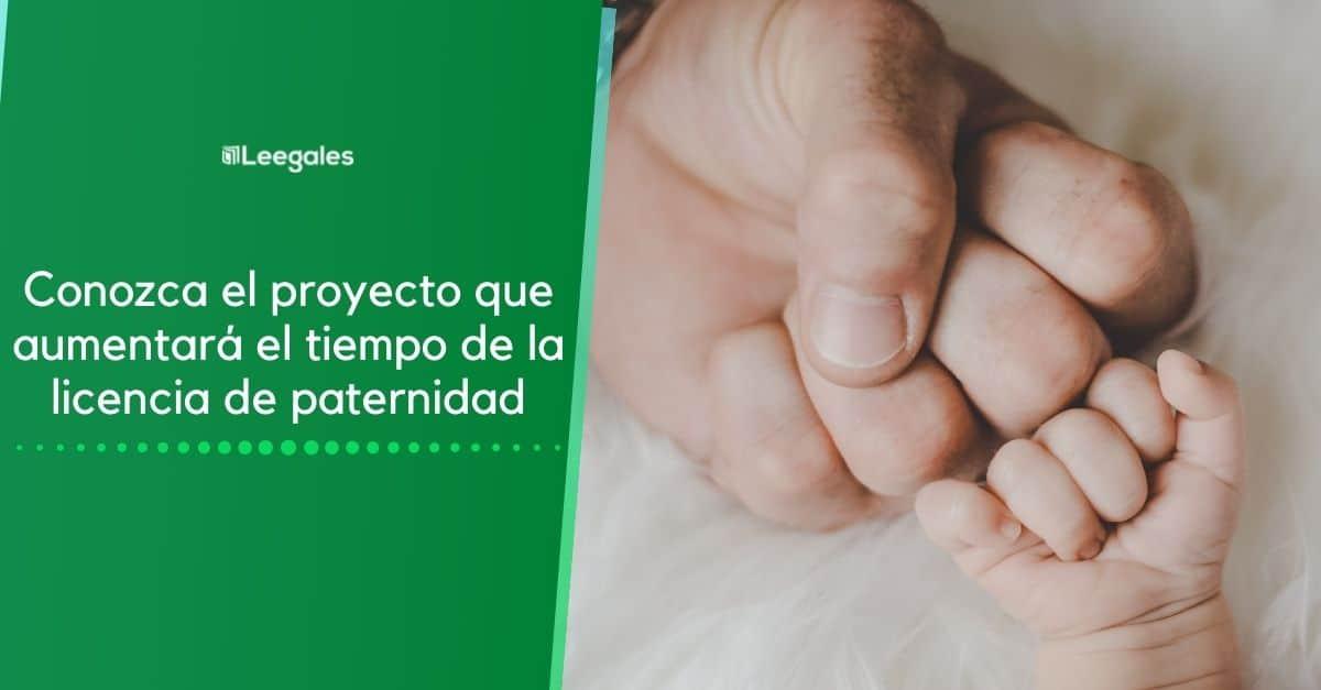 ampliación licencia de paternidad